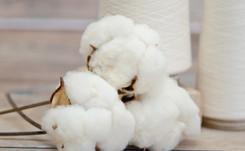 El Corte Inglés potenciará el uso de algodón sostenible y se adhiere al BCI