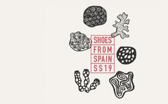 La evolución del calzado español en datos
