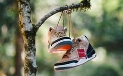 Nike set to launch sneaker designed by Justin Timberlake next week
