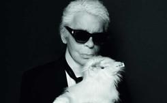 """La gata Choupette, """"el centro del mundo"""" de Karl Lagerfeld"""
