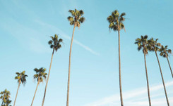 Four fashion professionals share what it's like to work in Los Angeles