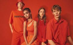 Bershka lanza su nueva colección Pantone